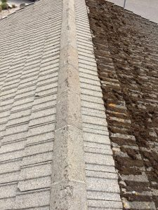 Softwash roof cleaning